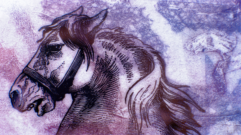 Horse Engraving wallpaper