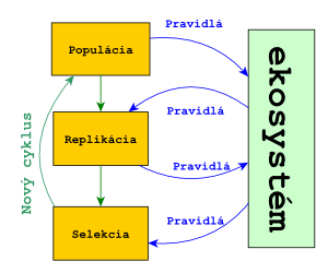 Evolvujúci systém
