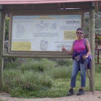 0060 Pilar en el castro de Ulaca