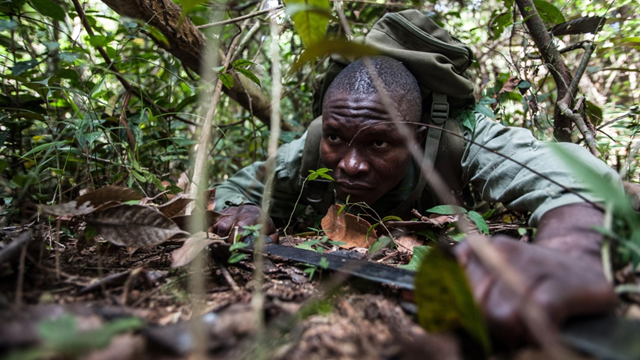 Former Kamajor militia fighters work to protect and breathe life back into the endangered Gola Forest. The rangers use skills acquired as hunters and soldiers to protect the forest against those who would destroy it. Photo: Aurelie Marrier d'Unienville / Al Jazeera
