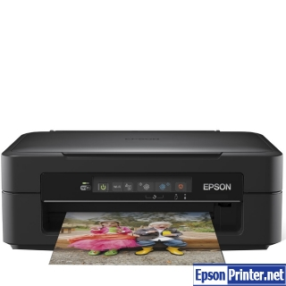 Download Epson Expression Home XP-215 printer driver