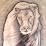 Mohamad Shanti's profile photo
