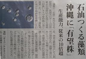 日本中の休耕田をAurantiochytrium(オーランチオキトリウム)の「油田」に