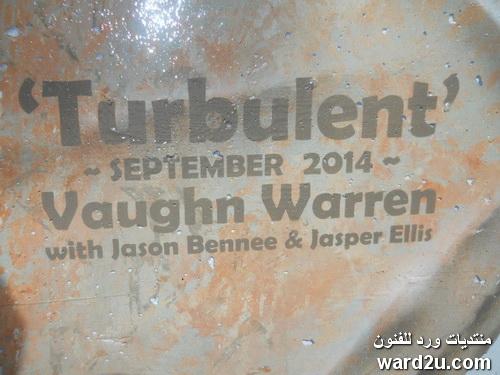 ابداعات الفنان الكندي Vaughn Warren
