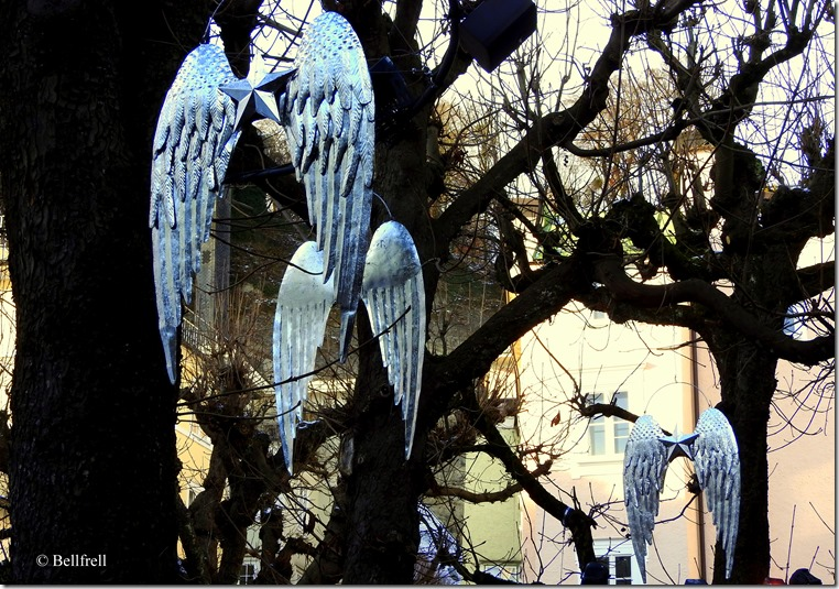 Flügel im Baum