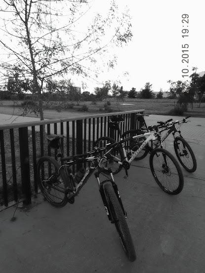 Rutas en bici. - Página 39 Ultimo%2Bpaseo%2Bde%2Btarde%2B004