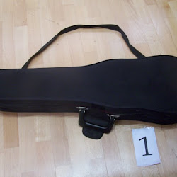 Violin Case - Project