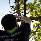 Campaments de Primavera de tot lAgrupament 2011 - _MG_1884.JPG
