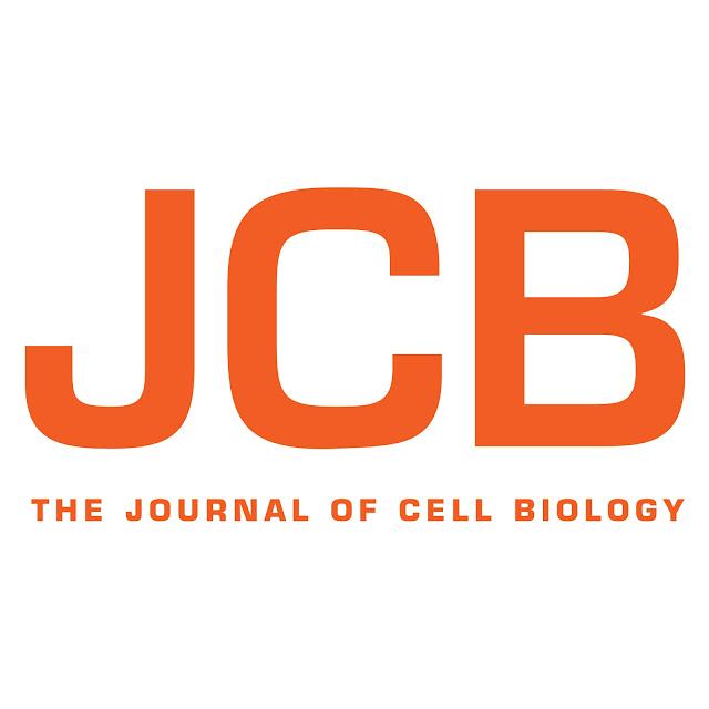 Картинки по запросу Journal of Cell Biology journal