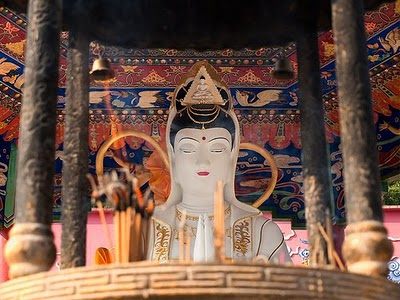 Buddhism Between Extremes Image