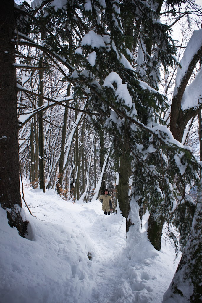 Winter Lubnik - Vika-0671.jpg
