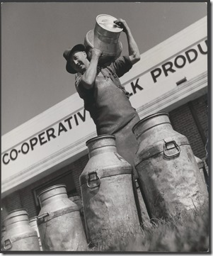 Milk carrier Frederick (Fred) Jones delivers full milk cans at Drouin's co-operative milk factory, Drouin, Victoria [picture] /