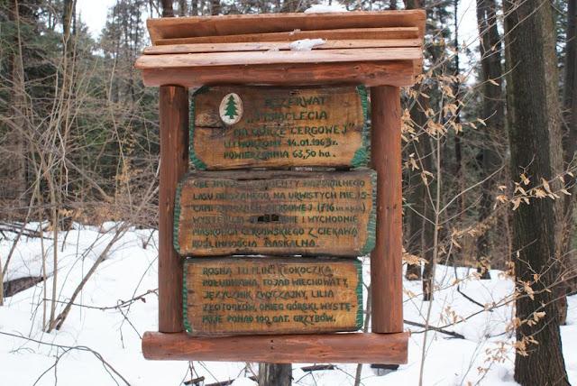 Zajęcia terenowe 29 lutego 2012 - DSC06206_1.JPG