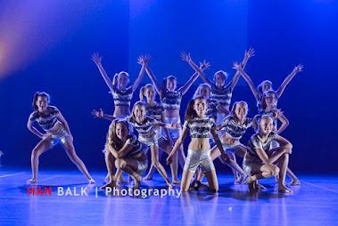 Han Balk Voorster Dansdag 2016-3758-2.jpg