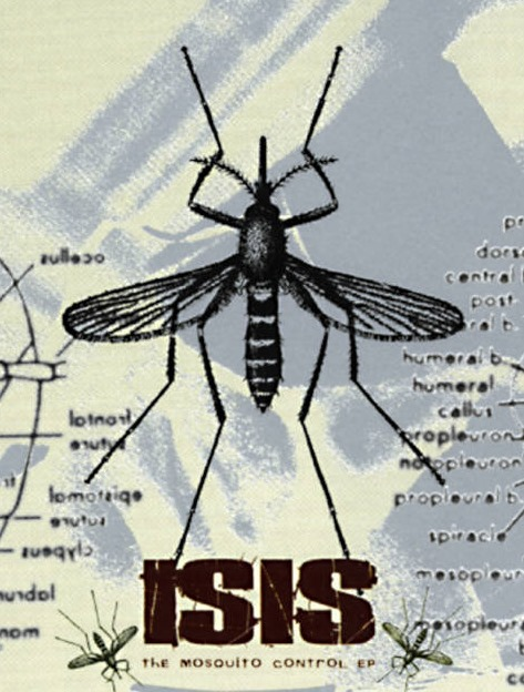 [isis+mosquito%5B5%5D]