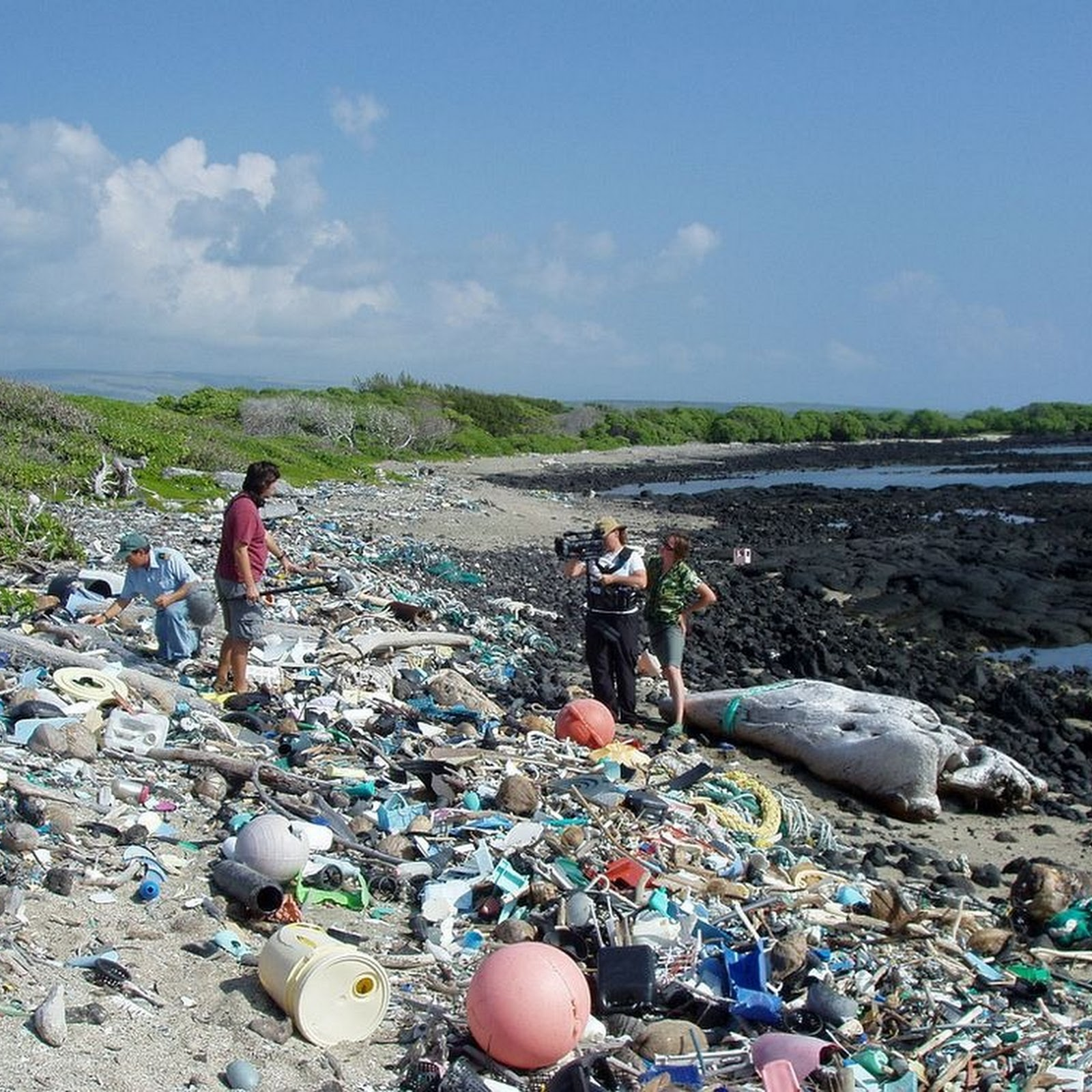 Kamilo: Hawaii's Plastic Beach