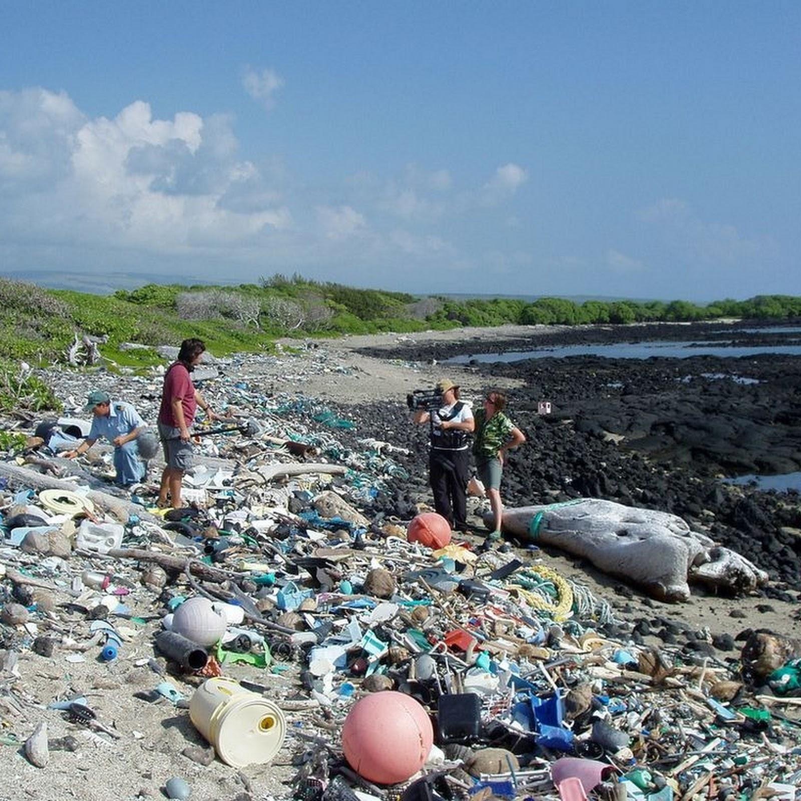 Kamilo Hawaii's Plastic Beach