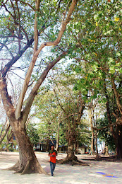 pulau harapan, 29-30 agustus 2015 Canon 150