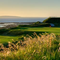 Ballybunion Golf Club's profile photo