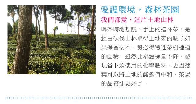 喝茶時總想說,手上的這杯茶,是經由砍伐山林取得土地來的嗎?如果保留樹木,勢必得犧牲茶樹種植的面積,雖然此舉讓採量下降,發現省下須使用的化學肥料,更因落葉可以將土地的酸鹼值中和,茶湯的品質卻更好了。