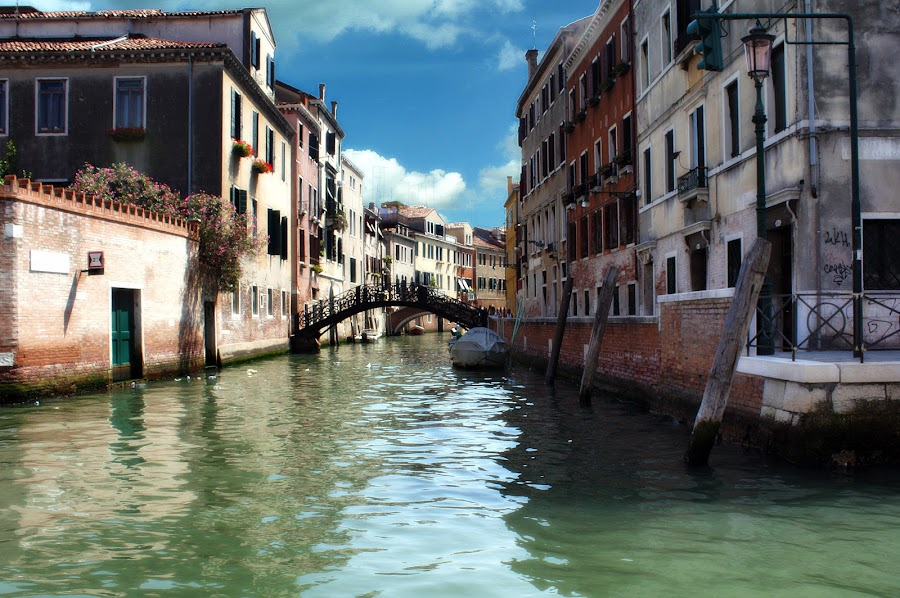 venice by Almas Bavcic - City,  Street & Park  Historic Districts