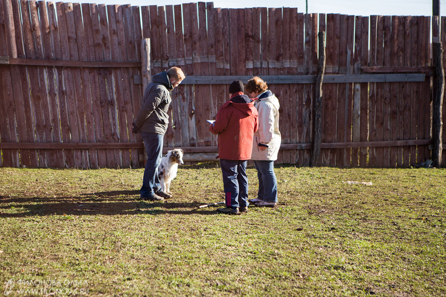 Тест на наличие пастушьего инстинкта - Страница 18 12-10-27-filonovaoawed-12-44-07-81