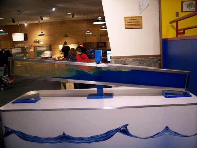 Waves! A Guide to Exploring the Carnegie Science Center