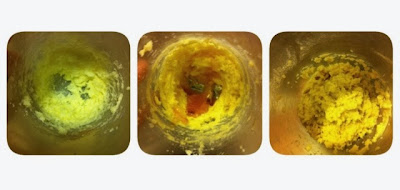 Omini di pan di zenzero: ricetta ingredienti