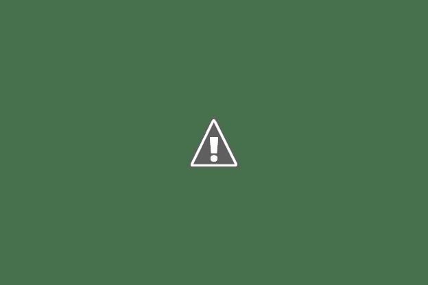 عدد معجبين محمد عساف على الصفحة الرسمية وصل الى 123,518 فنان Arab Idol