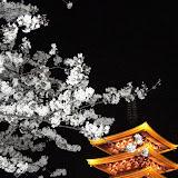 2014 Japan - Dag 3 - roosje-DSC01429-0030.JPG