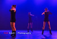 Han Balk Voorster Dansdag 2016-4945-2.jpg