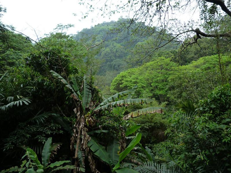 TAIWAN Taoyan county, Jiashi, Daxi, puis retour Taipei - P1260633.JPG