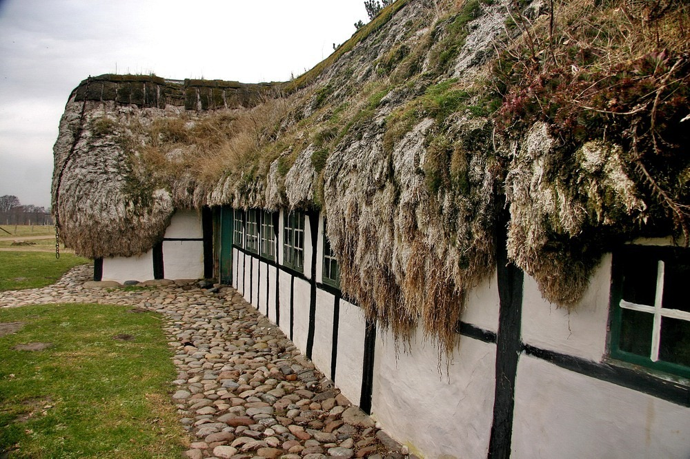 seaweed-roof-laeso-5