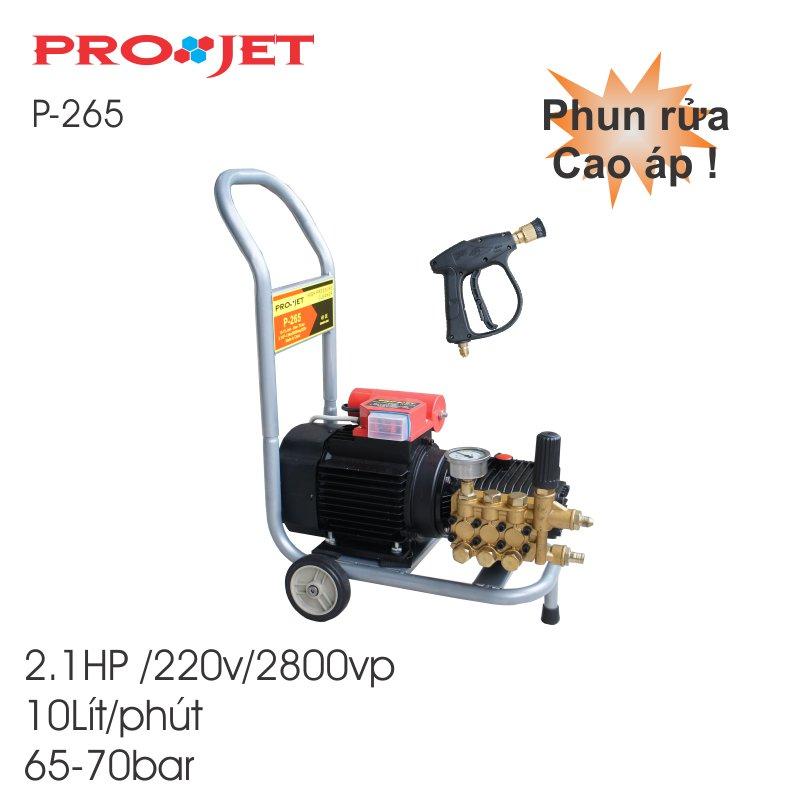 Máy rửa xe máy - P265