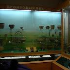 Археологический музей ВГПУ 013.jpg