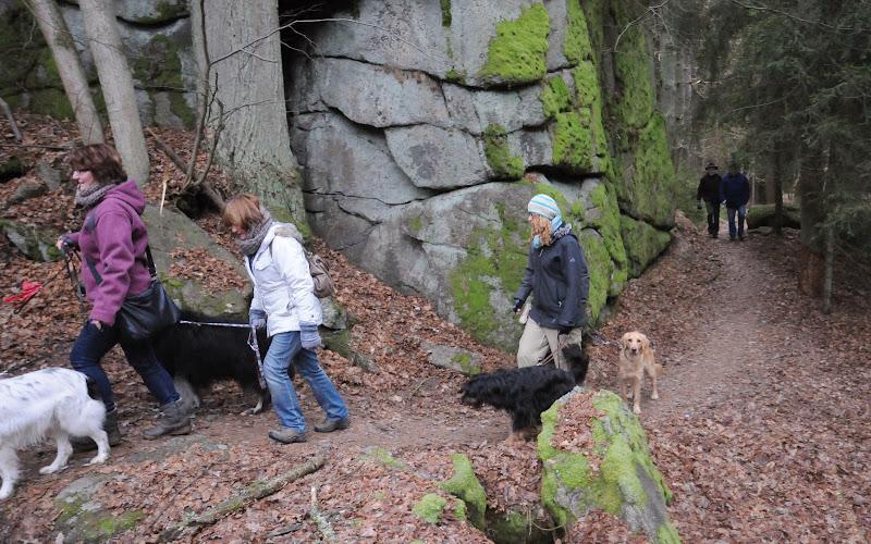 20140101 Neujahrsspaziergang im Waldnaabtal - DSC_9821.JPG