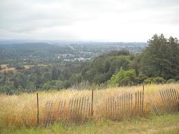 View of Santa Cruz from below UC Santa Cruz.