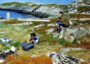 1977 г. Остров Вишняк. Оазис в Ледовитом океане