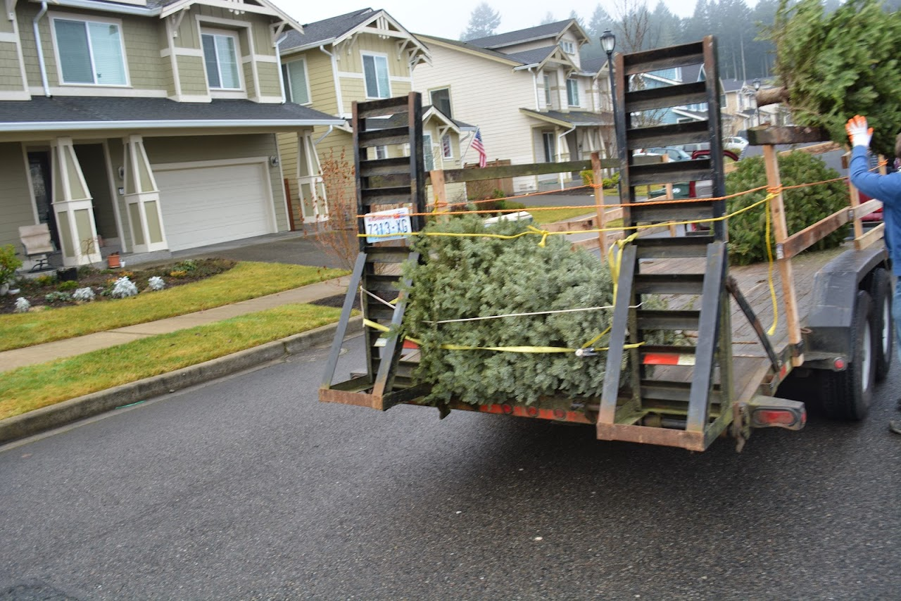 Christmas Tree Pickup 2014 - DSC_0070.jpg