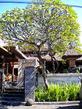 Photo: Sanur Beach, Bali:  Photographer: Aishah from Malaysia