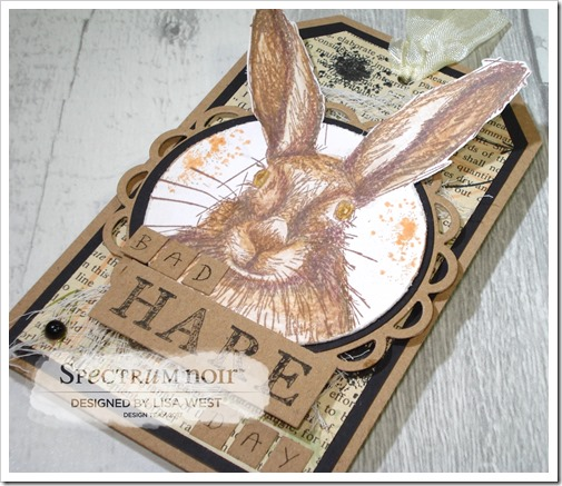 Hare (7)