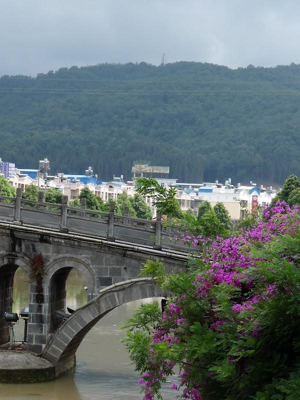 Chine .Yunnan,Menglian ,Tenchong, He shun, Chongning B - Picture%2B767.jpg