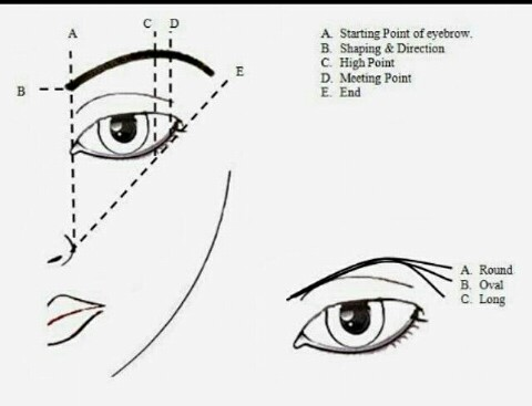 for the love of brows how to draw a perfect eyebrow
