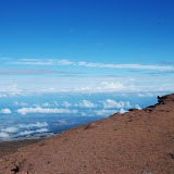 hawaii - 26.jpg