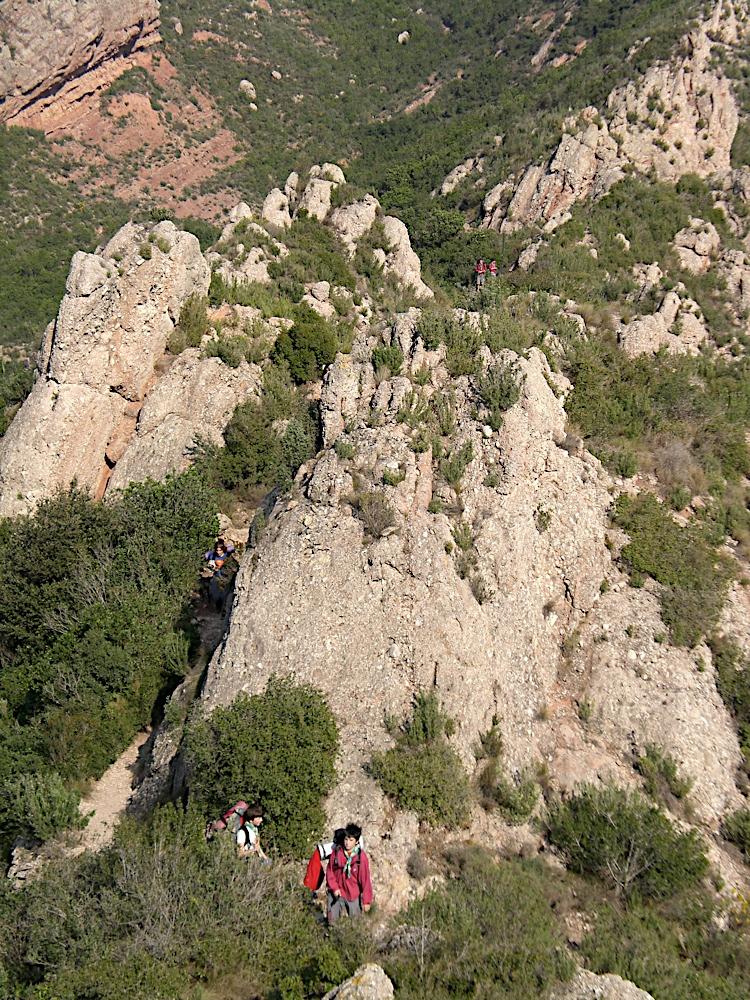 Sortida Sant Salvador de les espasses 2006 - CIMG8252.JPG