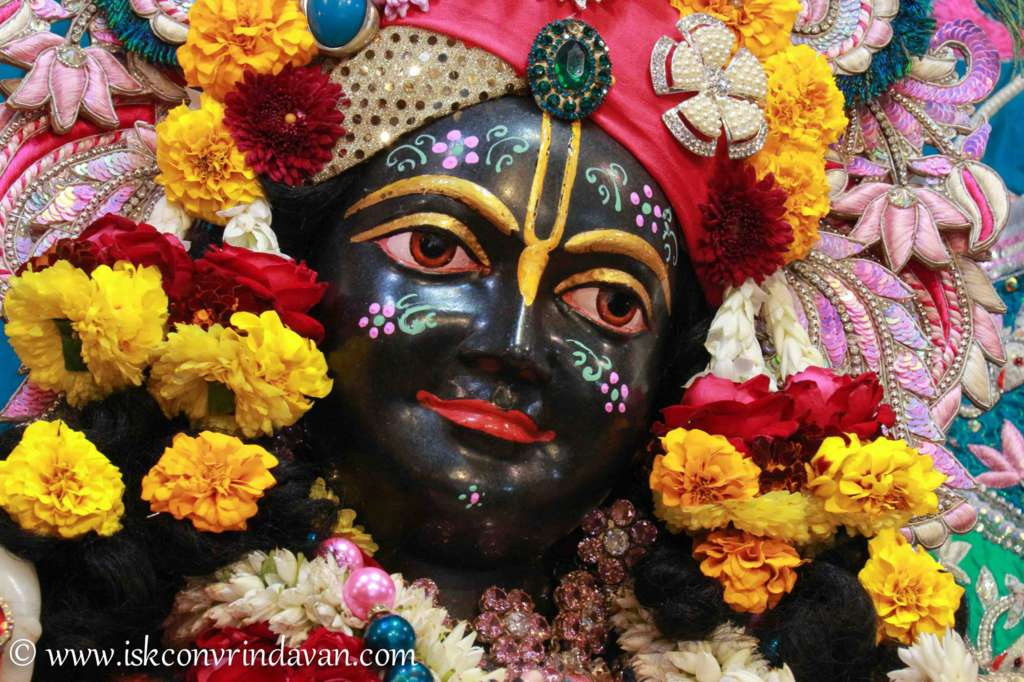 ISKCON Vrindavan Sringar Deity Darshan 17 Dec 2015 (11)