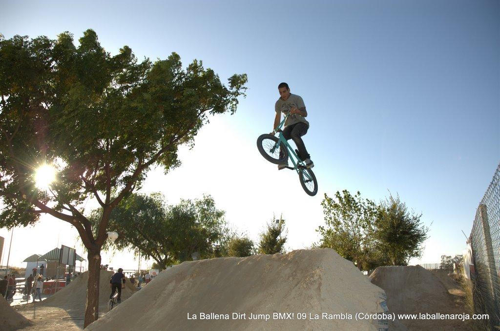 Ballena Dirt Jump BMX 2009 - BMX_09_0101.jpg