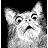 Ollie Lithianic avatar image