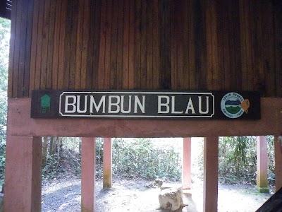 BUMBUN BLAUの看板
