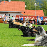 20100914 Sommerfest - DSC_4331.JPG